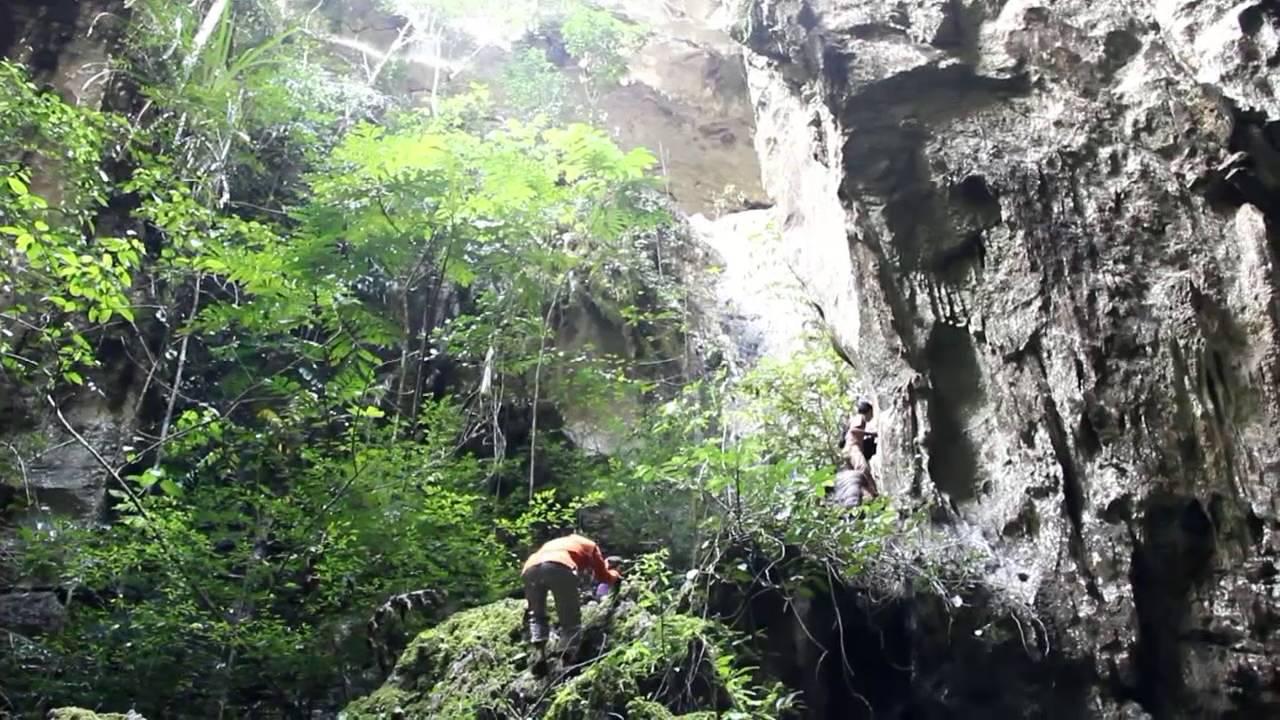 Gua Napal Licin Yang Sempat Mendunia